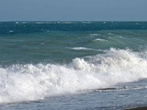 The sea is ever-present. I took this photograph at Port Royal last year (on the open sea side).