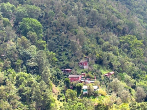 Hillside and houses seen from the camp.