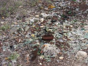 Garbage illegally dumped in Hellshire, part of the Portland Bight Protected Area. (My photo)