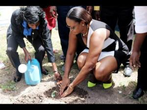 Juliet Holness (right), member of parliament for East Rural St Andrew, gets assistance from Bevene Martin-Dickenson, acting parish manager for the Rural Agricultural Development Authority, St Andrew branch office, in planting a broccoli seedling during yesterday's launch of AgriHope, a $5.9 million pilot project under which farmers in the constituency will plant high-value vegetables for the hotel niche market. (Photo: Gleaner)