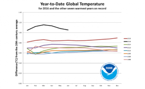 The black line at the top shows 2016 global temperatures in terms of the degrees Centigrade difference from the 20th century average. (Graph: NASA)