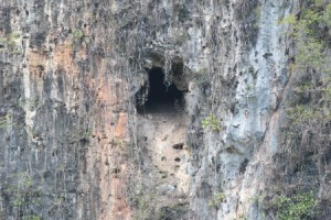Ram Goat Cave; photo taken from Barbecue Bottom with a fixed Canon EF 400mm f/5.6L USM lens. (Photo by Justin Proctor)