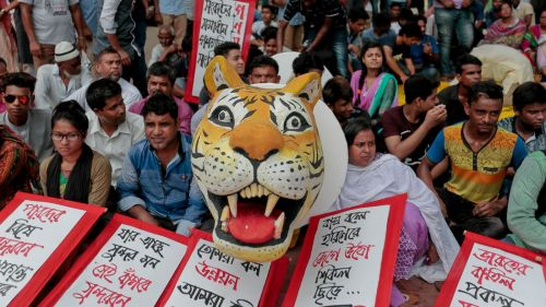 """FILE – In this Aug. 20, 2016 file photo, Bangladeshi protesters hold placards and a tiger replica during a protest demanding the scrapping of the proposed Rampal power plant in Dhaka, Bangladesh. UNESCO and environmental groups are urging Bangladesh to halt plans for a massive coal plant near ecologically sensitive coastal forests. The UN body says the $1.8 billion project threatens the region and its endangered tigers and dolphin species. Bangladesh has dismissed the concerns as unfounded and says it will continue construction. Placards in Bangla read """"Stop Rampal Project."""" (AP Photo/A.M.Ahad, File)"""