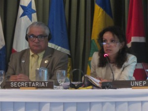 UN-CEP Secretariat's Alessandra Vanzella-Khouri addresses a biodiversity issue at the 6th Meeting of the Scientific & Technical Advisory Committee in Colombia. (Photo: United Nations Environment Programme - Caribbean Environment Programme)
