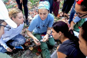 Local and international students learn about how migratory birds are captured and banded for research in the Boca de Canasí Ecological Reserve in Cuba.  (Photo by Juan Luis Leal)