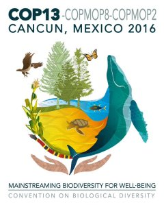 COP13 in Cancun, Mexico. What a beautiful logo!