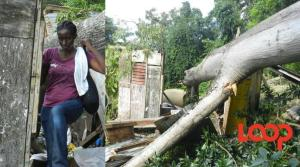 Natalie Smith at the house in Buckfield, St. Ann. A huge cotton tree fell on the house, killing her daughter and ex-boyfriend. (Photo: Loop Jamaica)