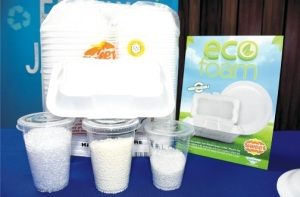"These chemical pellets, manufactured by ECM Biofilms, will make up one per cent of the styrofoam, making it ""fully biodegradable."" (Photo: Garfield Robinson/Jamaica Observer)"