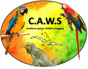 The CAWS log, showing some of the animals that are threatened by the illegal wildlife trade.