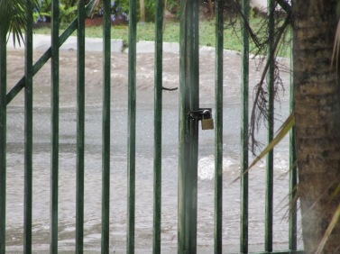 Our gate, and a torrent of rain outside!