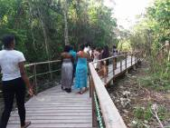 Walking on the new Biodiversity Boardwalk funded by the Environmental Foundation of Jamaica at the Discovery Bay Marine Laboratory.