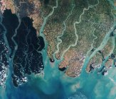 The Sundarbans in Bangladesh (the green area to the right) is the largest single area of tidal mangrove in the world, living in a mix of salt and fresh water. (Photo: Earthonline)
