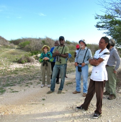 Members of BirdLife Jamaica, simply hanging around during a birdwatching trip. It's nice to take a break and have a leisurely chat before embarking on a new bird-watching binge!