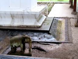 A small elephant carving at the Temple of the Sacred Tooth Relic in Kandy, Sri Lanka. The effect of water...