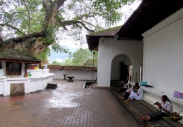 At the Temple of the Sacred Tooth Relic in Kandy, Sri Lanka, there was silence in many corners of the large compound. In this courtyard, the only sound was the occasional bird call, and the murmurs of people praying.