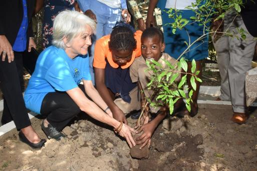 "Dr. Elizabeth Ward planted a ""Tree for Peace"" today with students of Denham Town Primary School in Kingston. (Photo: Violence Prevention Alliance)"