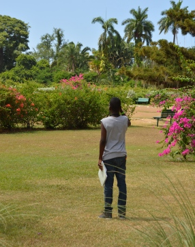 Here's another young man from the inner city, who was so captivated by birdwatching at a summer camp sponsored by BirdsCaribbean a few years ago. He wandered off alone with his binoculars.