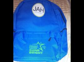 One of the schoolbags reportedly donated by Member of Parliament for East Rural St Andrew Juliet Holness to constituents. (Photo: Romario Scott)