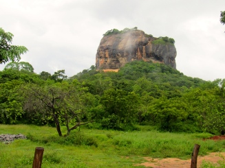 One of UNESCO's Top Five World Heritage Sites is Sigiriya. It's an ancient rock fortress (yes, there is a fortress at the top) dating back to the fifth century, with a turbulent history. It is simply stunning, set in a lush green plain filled with wildlife...I saw monkeys, parrots, monitor lizards and more.