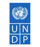 100x120_members_UNDP