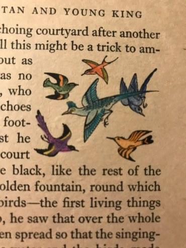 I even colored Arabian birds...