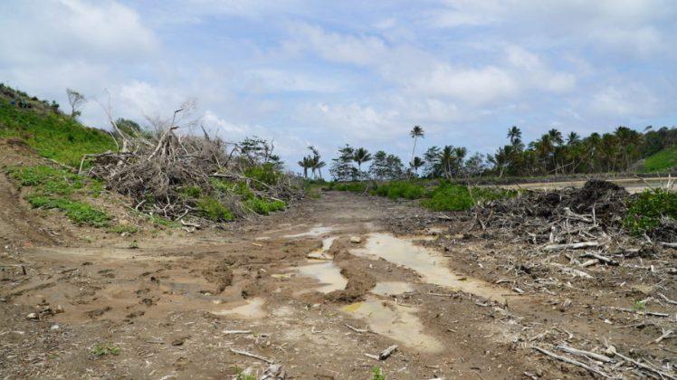 Deforestation-at-La-Sagesse-2-900x506